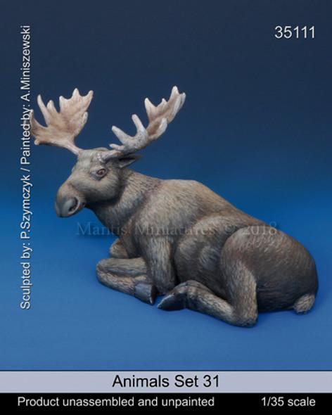 Animals Set 31 - Moose