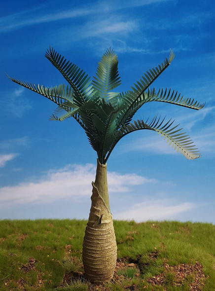 Cycad Palm