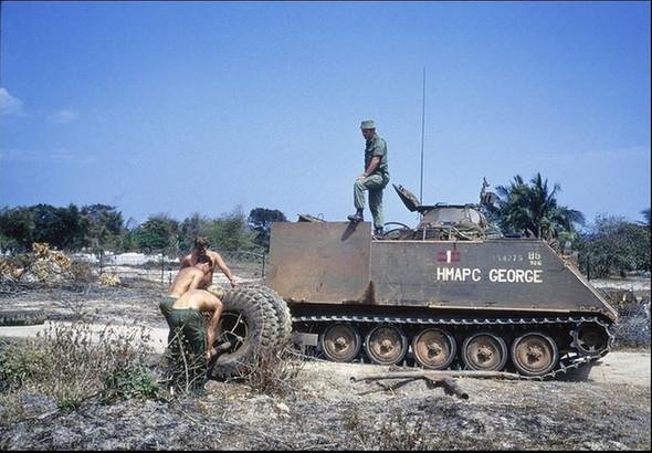 M113 Mine Exploder George (TA & AC)