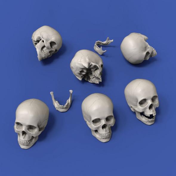 Skulls 75mm