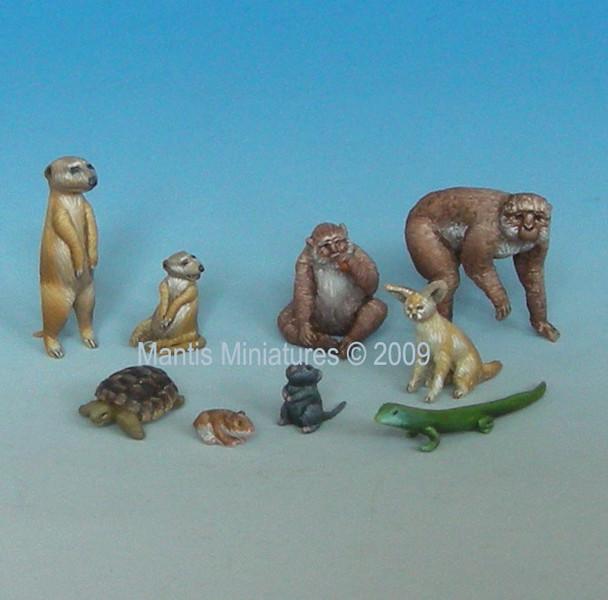 Animals - Set 1 (mediterranean and african)