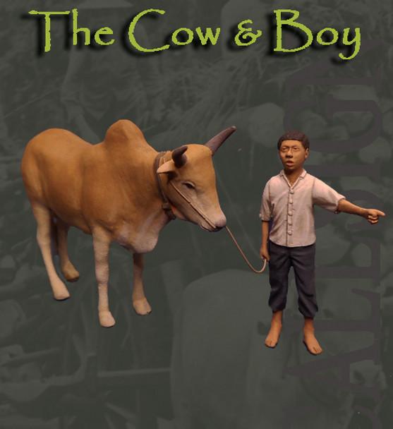 The Cow & Boy Vietnam