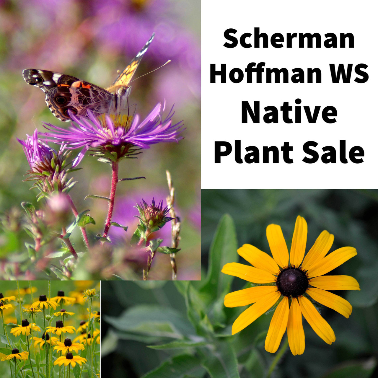 Scherman Hoffman Wildlife Sanctuary