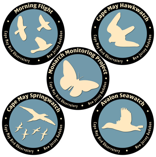 CMBO Migration Watch Logo Magnets