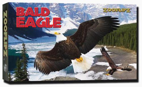 Bald Eagle flipbook