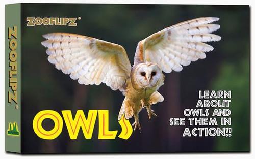 Owl flipbook