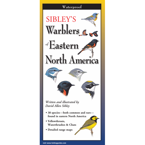 Sibley's Eastern Warblers laminated FoldingGuides™