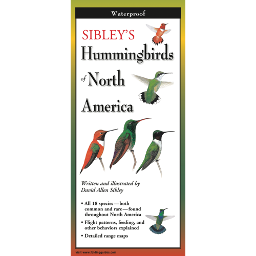 Sibley's Hummingbirds of North America laminated folding guide
