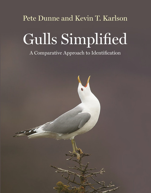 Gulls Simplified, gull field guide