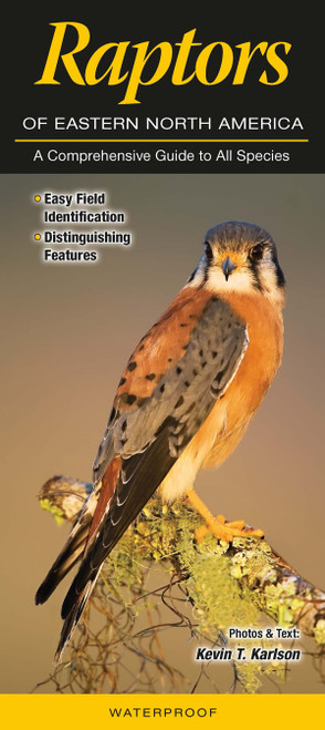 Raptors of Eastern North America laminated folding id guide