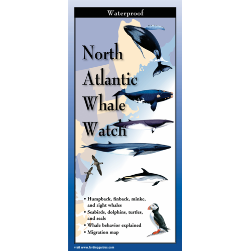 North Atlantic Whale Watch laminated FoldingGuide™