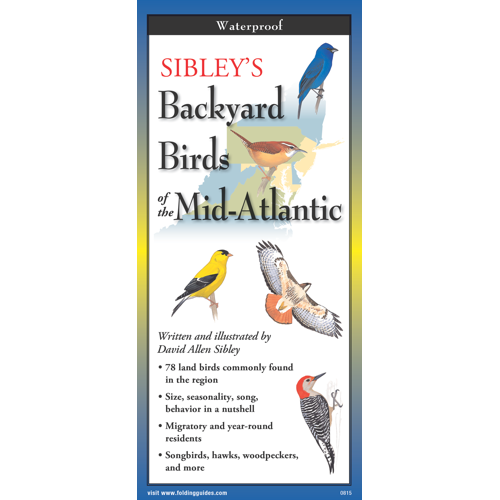 Sibley's Backyard Birds of the Mid-Atlantic laminated FoldingGuides™