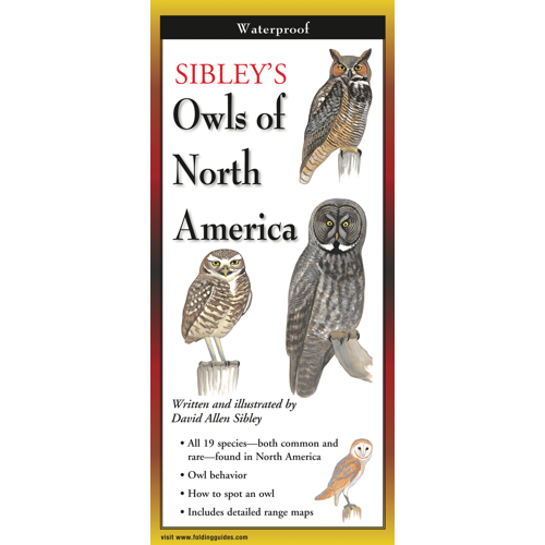 Sibley's Owls of North America laminated FodingGuides™