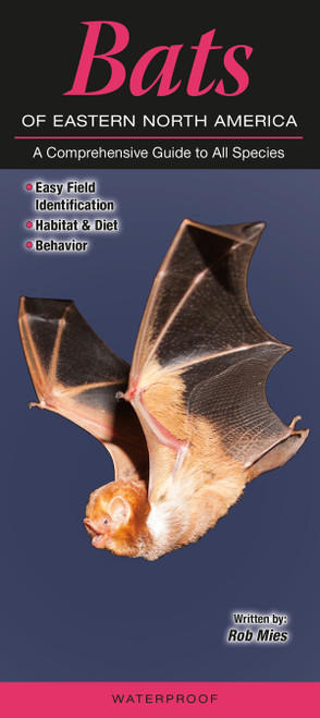 Bats of Eastern North America quick reference id guide