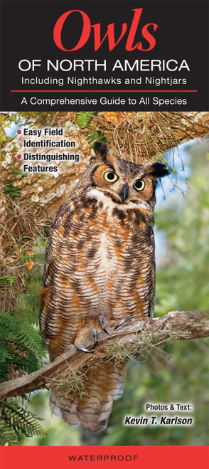 Owls of North America quick reference id guide