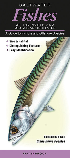 Saltwater Fishes of the Northern & Mid-Atlantic States: A Guide to Inshore & Offshore Species quick reference id guide