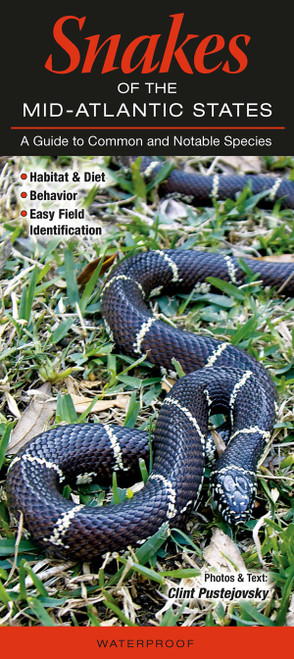 Snakes of Mid-Atlantic quick reference id guide