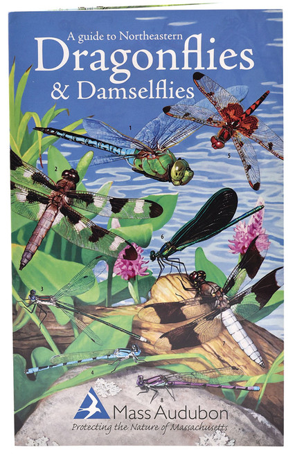 A Guide to Northeastern Dragonflies and Damselflies