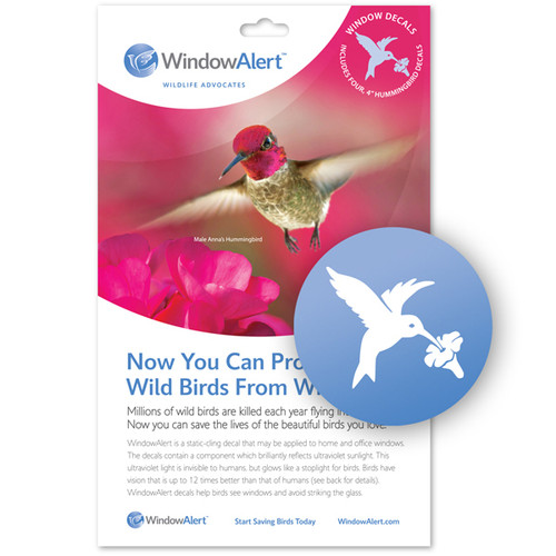 WindowAlert Hummingbird Decal