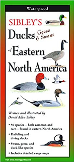 Sibley's Ducks, Geese, and Swans of Eastern North America