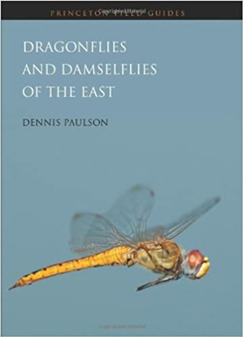 Dragonflies and Damselflies of the East