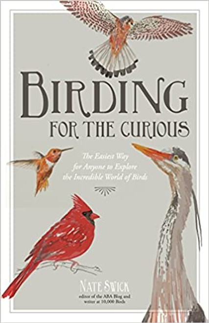 Birding for the Curious
