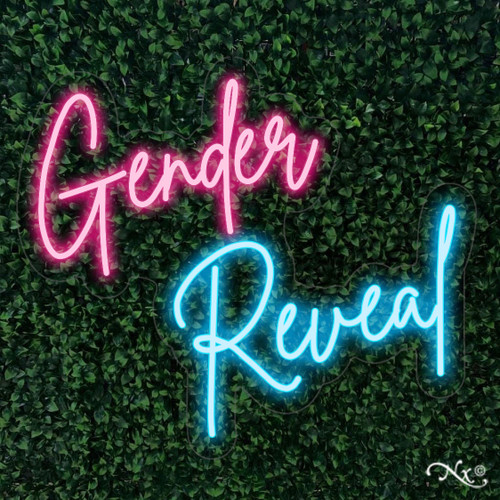 Gender Reveal 24x21x1in. LED Neon Flex Sign-LF092