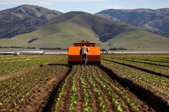 Industrial Agriculture is Killing Our Soils