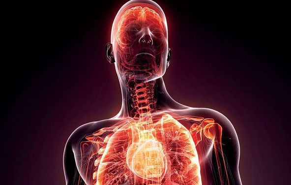 Are You Suffering from Silent Inflammation?