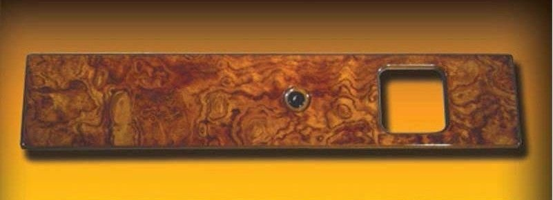 PETERBILT DOOR INSERT PANEL (PASSENGER SIDE ONLY) 370 SERIES MODELS