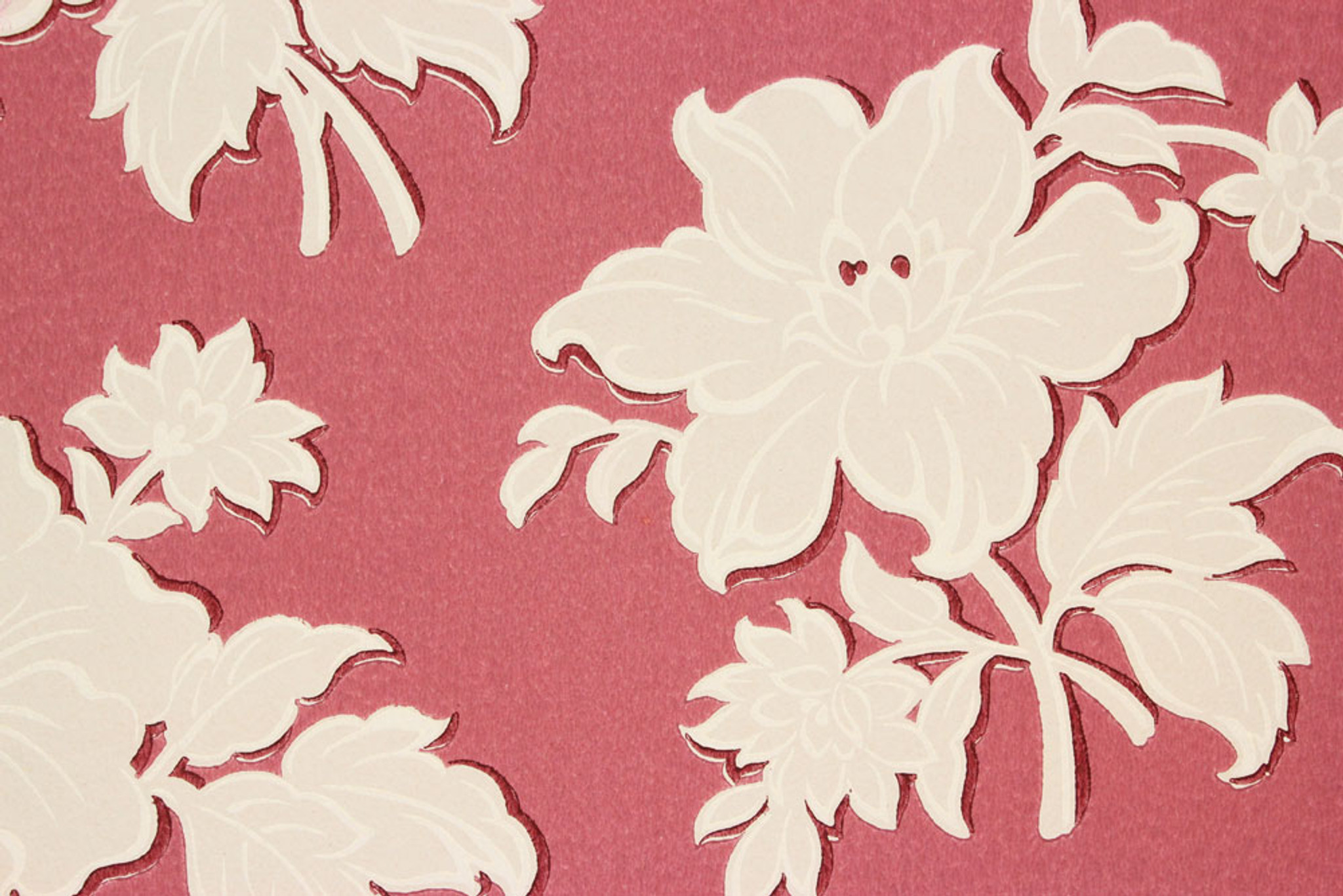 1940s Vintage Wallpaper Large White Floral On Red Rosie S