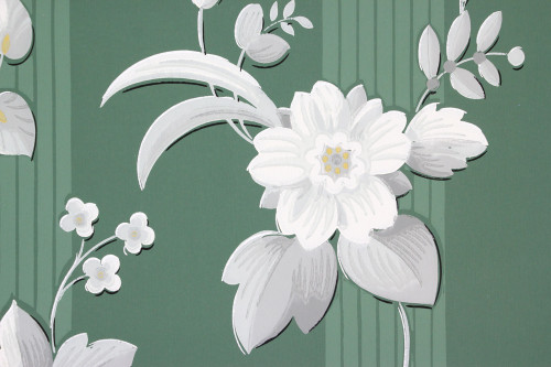 1940s Vintage Wallpaper White Flowers on Green