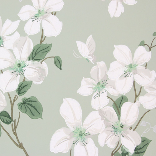 1940s Vintage Wallpaper White Dogwood on Green