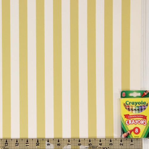 1950s Vintage Wallpaper Thomas Strahan Yellow Gold Stripe