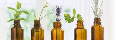 Should I Ingest Essential Oils?