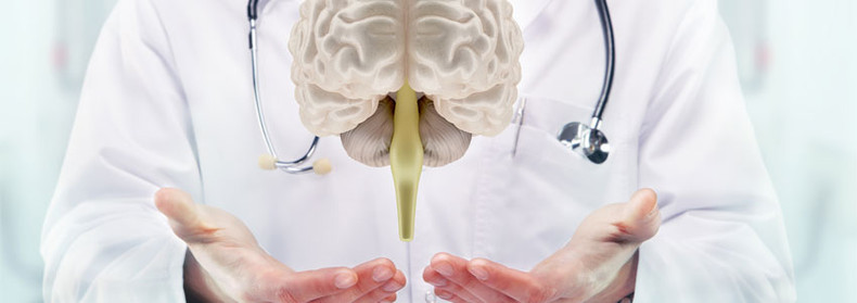 B Vitamins: are they good for the brain?