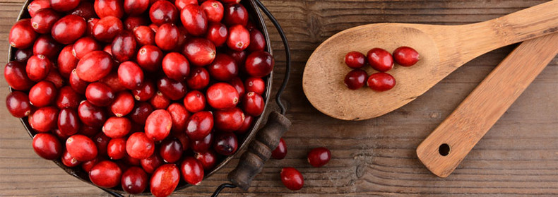Can Cranberry Juice help prevent Urinary Tract Infections?