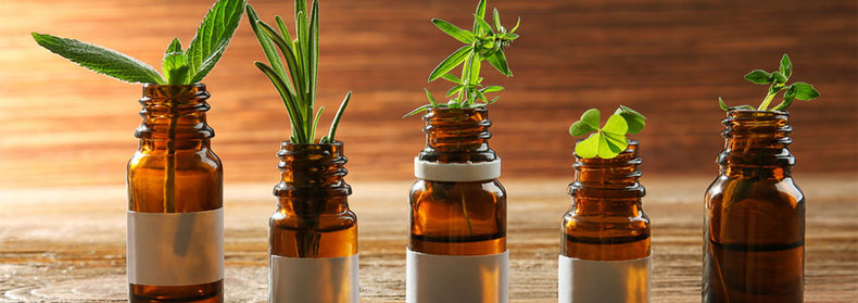 What Exactly is a Naturopath?