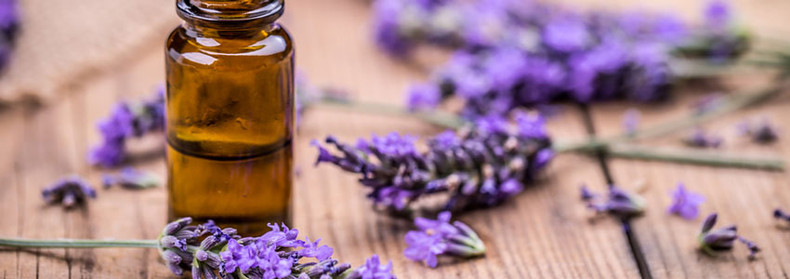 10 Benefits of Lavender Essential Oil & How to Use it