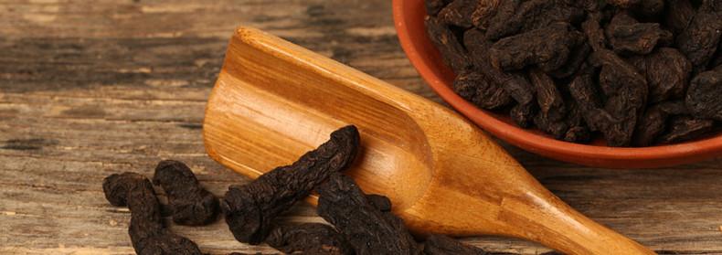 Herb of the Month:  Rehmannia (Rehmannia glutinosa)