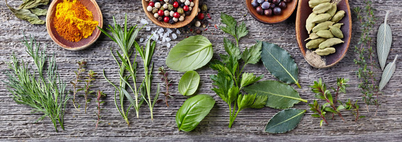 Household Herbs that are Great for Immunity!