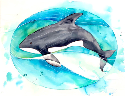 Original Orca Watercolor