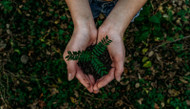 Going Green - Small Changes Can Add Up to Conserve Resources!