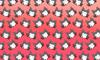 Derp Wolf Pattern Mask
