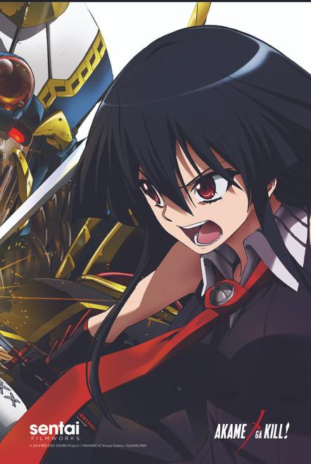 Akame ga Kill! Akame VS Esdeath