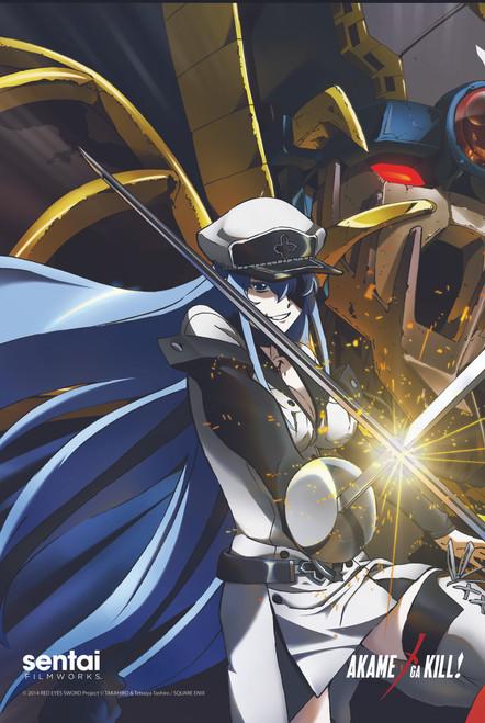 Akame ga Kill! Esdeath VS Akame