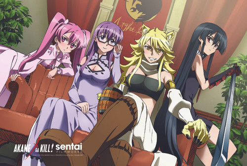 Akame ga Kill! Ladies Night