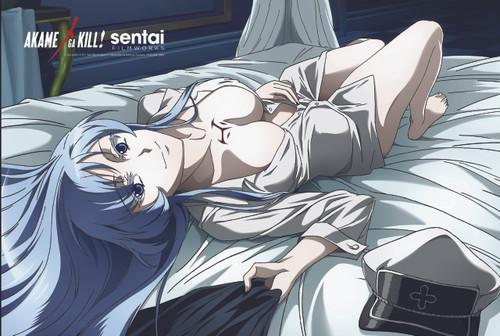 Akame ga Kill! Bedtime