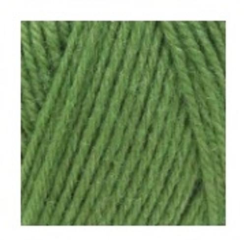 Peter Pan-Grass