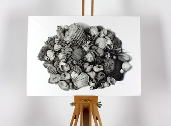 'Jurassic Collection' limited edition print by Katy Harrald